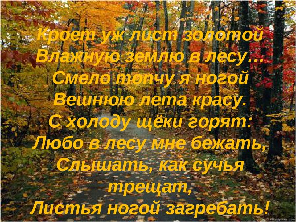 Кроет уж лист золотой Влажную землю в лесу… Смело топчу я ногой Вешнюю лета к...