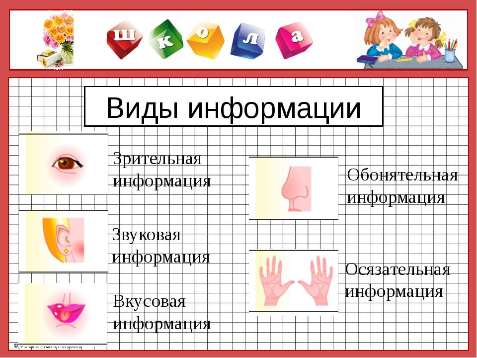 Виды информации Зрительная информация Вкусовая информация Звуковая информация...