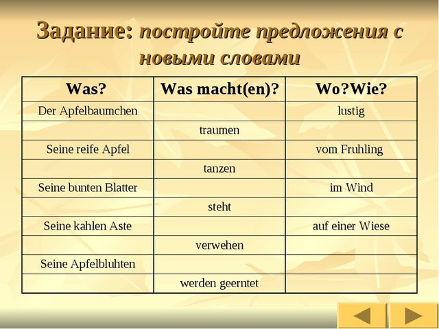 Задание: постройте предложения с новыми словами Was? Was macht(en)?Wo?Wie?...
