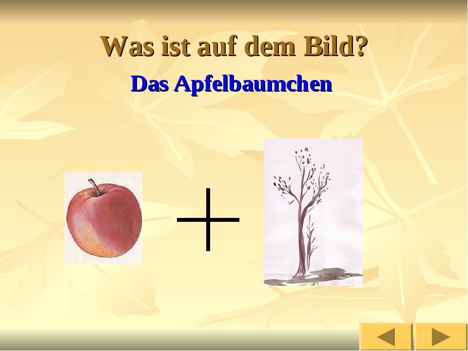 Was ist auf dem Bild? Das Apfelbaumchen