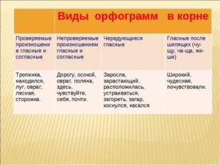 Виды орфограмм в корне Проверяемые произношение гласные и согласныеНепрове