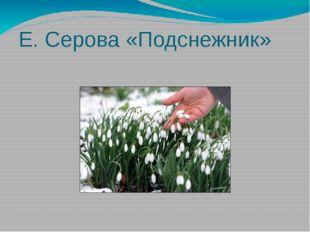 Е. Серова «Подснежник»
