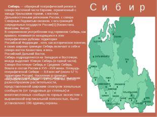 С и б и р ь Для гигантской территории Сибири с высоким разнообразием растител