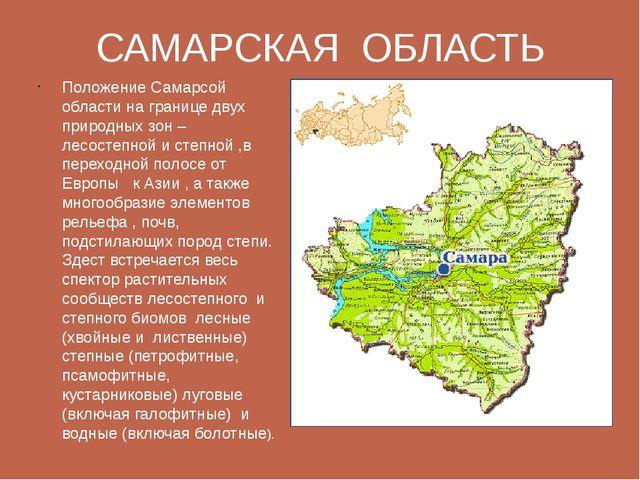 САМАРСКАЯ ОБЛАСТЬ Положение Самарсой области на границе двух природных зон –...