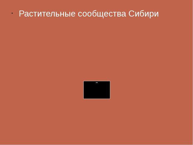 Растительные сообщества Сибири