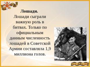Лошади. Лошади сыграли важную роль в битвах. Только по официальным данным чи