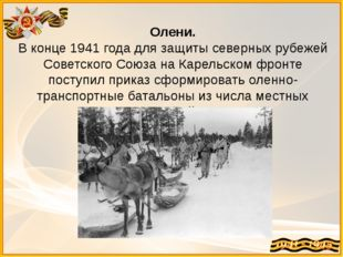 Олени. В конце 1941 года для защиты северных рубежей Советского Союза на Каре