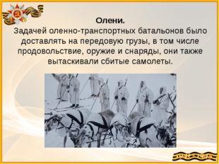 Олени. Задачей оленно-транспортных батальонов было доставлять на передовую гр