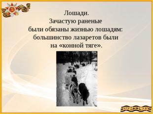 Лошади. Зачастую раненые были обязаны жизнью лошадям: большинство лазаретов