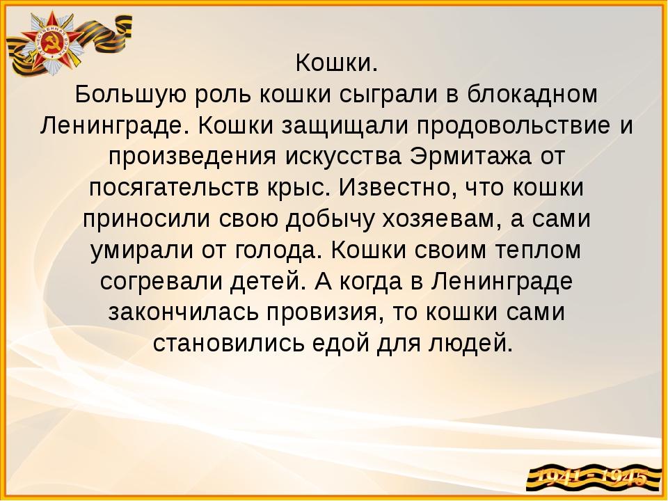 Кошки. Большую роль кошки сыграли в блокадном Ленинграде. Кошки защищали прод...