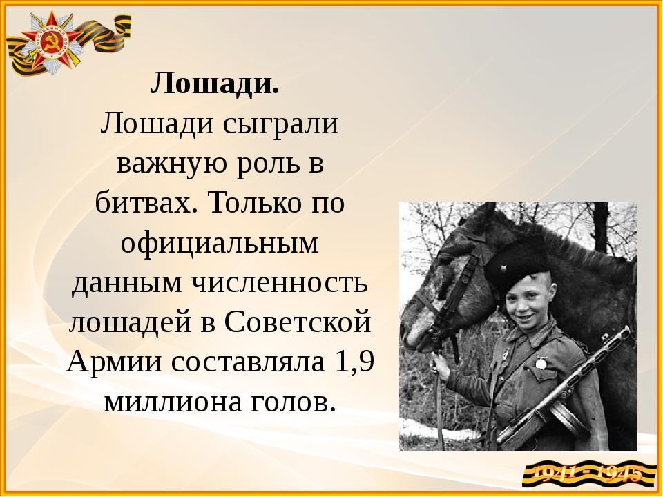 Лошади. Лошади сыграли важную роль в битвах. Только по официальным данным чи...
