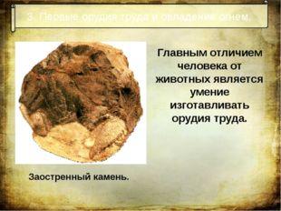3. Первые орудия труда и овладение огнем. Заостренный камень. Главным отличие