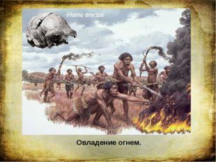 Овладение огнем. Величайшим событием в жизни древних людей стало овладение ог