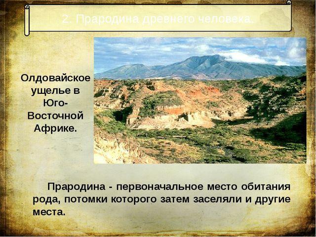 2. Прародина древнего человека. Прародина - первоначальное место обитания род...