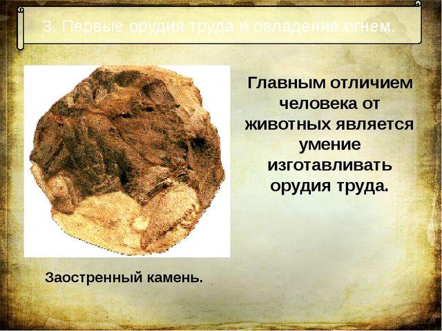 3. Первые орудия труда и овладение огнем. Заостренный камень. Главным отличие...