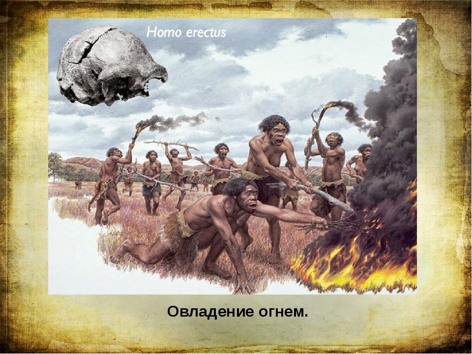 Овладение огнем. Величайшим событием в жизни древних людей стало овладение ог...