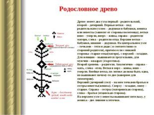 Родословное древо Древо имеет два узла первый - родительский, второй – дочерн