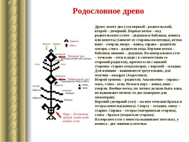 Родословное древо Древо имеет два узла первый - родительский, второй – дочерн...