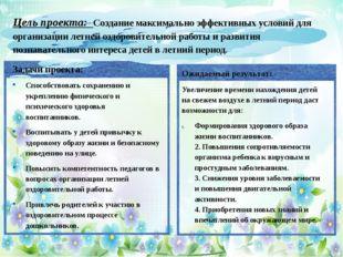Цель проекта: Создание максимально эффективных условий для организации летне