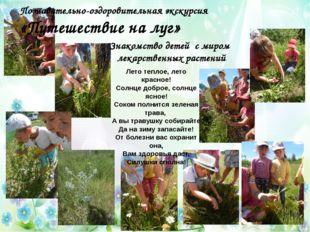 Знакомство детей с миром лекарственных растений Лето теплое, лето красное! Со