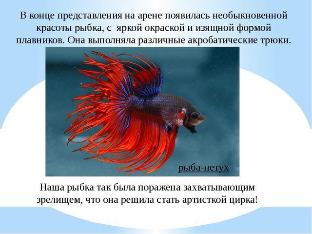 В конце представления на арене появилась необыкновенной красоты рыбка, с ярко...