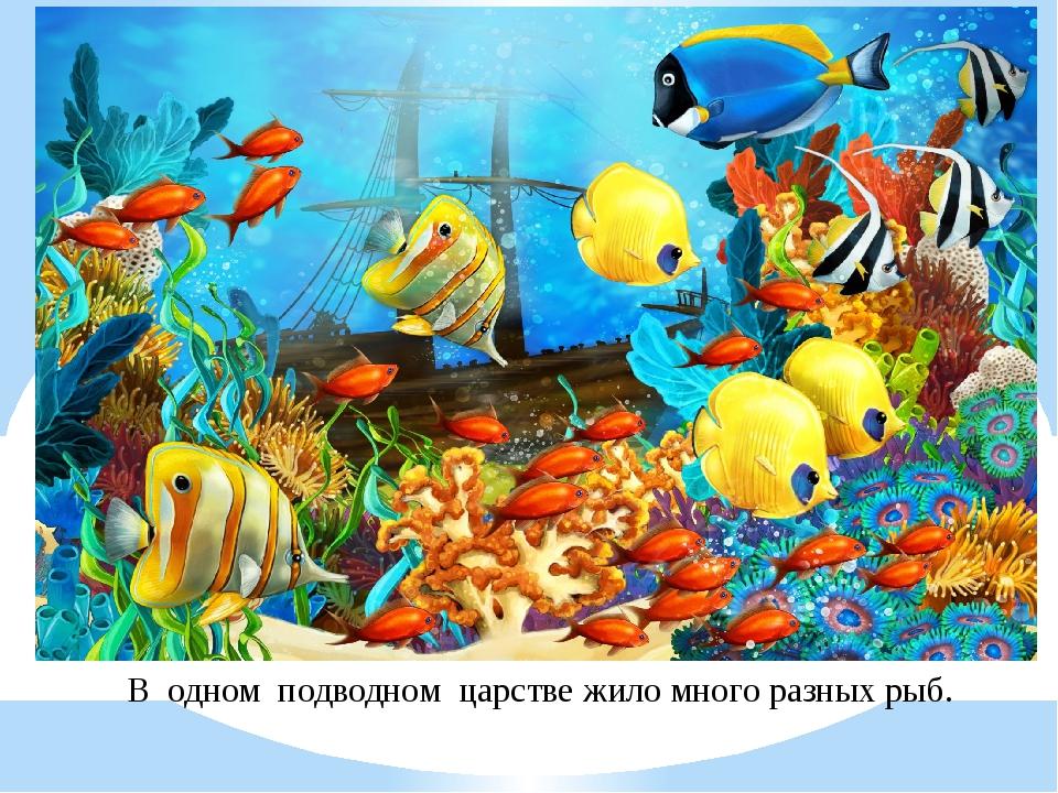 В одном подводном царстве жило много разных рыб.