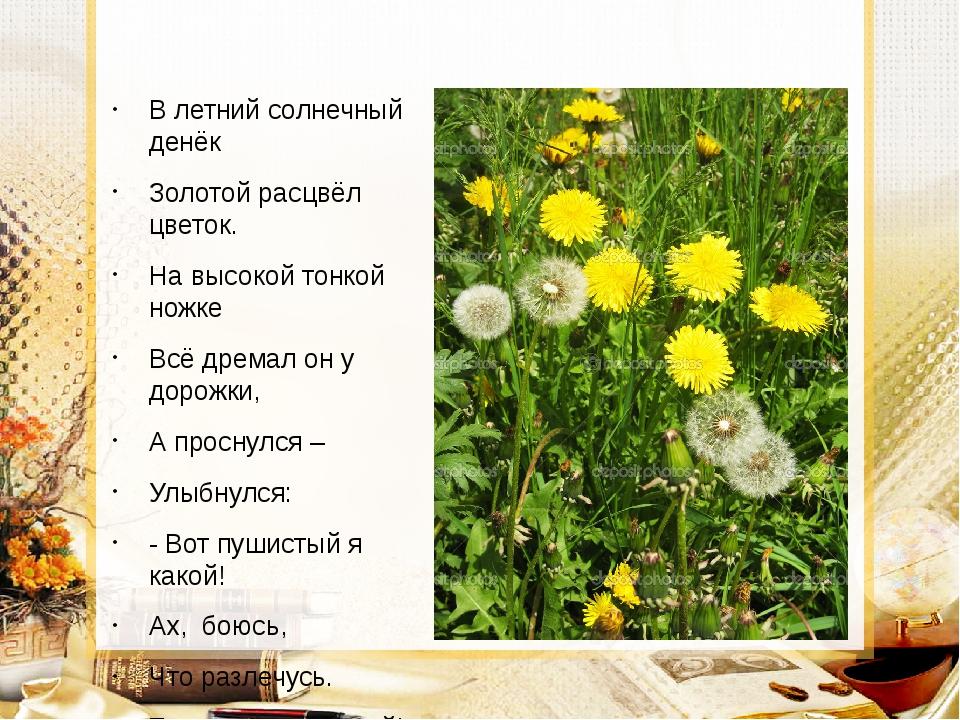 В летний солнечный денёк Золотой расцвёл цветок. На высокой тонкой ножке Всё...