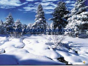Зима красою славится:
