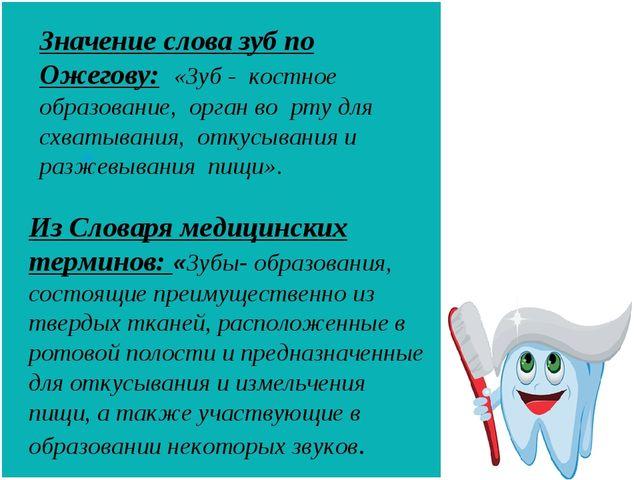 Значение слова зуб по Ожегову: «Зуб - костное образование, орган во рту для с...