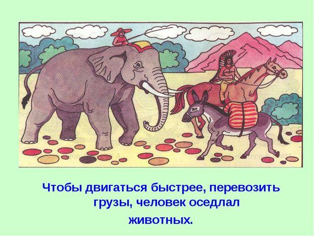 Чтобы двигаться быстрее, перевозить грузы, человек оседлал животных.