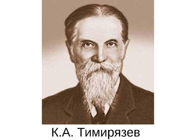 К.А. Тимирязев