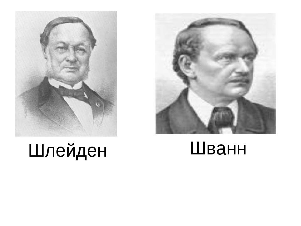 Шванн Шлейден