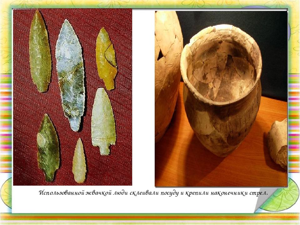 Использованной жвачкой люди склеивали посуду и крепили наконечники стрел.