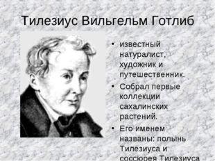 Тилезиус Вильгельм Готлиб известный натуралист, художник и путешественник. Со