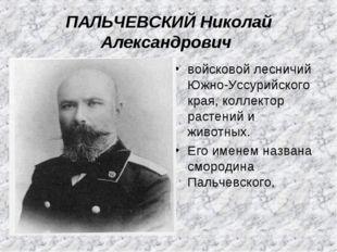 ПАЛЬЧЕВСКИЙ Николай Александрович войсковой лесничий Южно-Уссурийского края,
