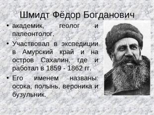 Шмидт Фёдор Богданович академик, геолог и палеонтолог. Участвовал в экспедици