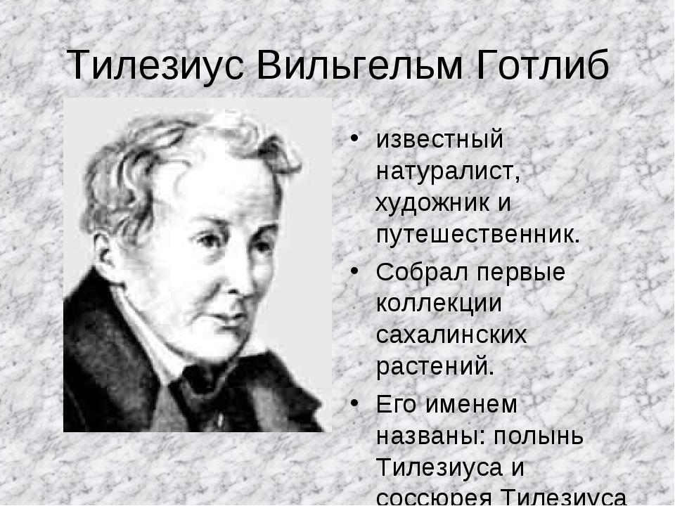 Тилезиус Вильгельм Готлиб известный натуралист, художник и путешественник. Со...