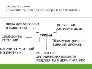 Составьте схему «Значение грибов для биосферы и для человека» ГРИБЫ ПИЩА ДЛЯ