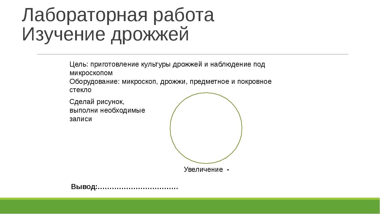 Лабораторная работа Изучение дрожжей Цель: приготовление культуры дрожжей и н...