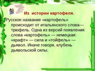 Из истории картофеля. Русское название «картофель» происходит от итальянског