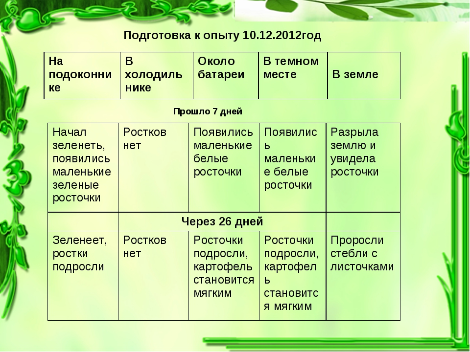 Подготовка к опыту 10.12.2012год Прошло 7 дней На подоконникеВ холодильнике...