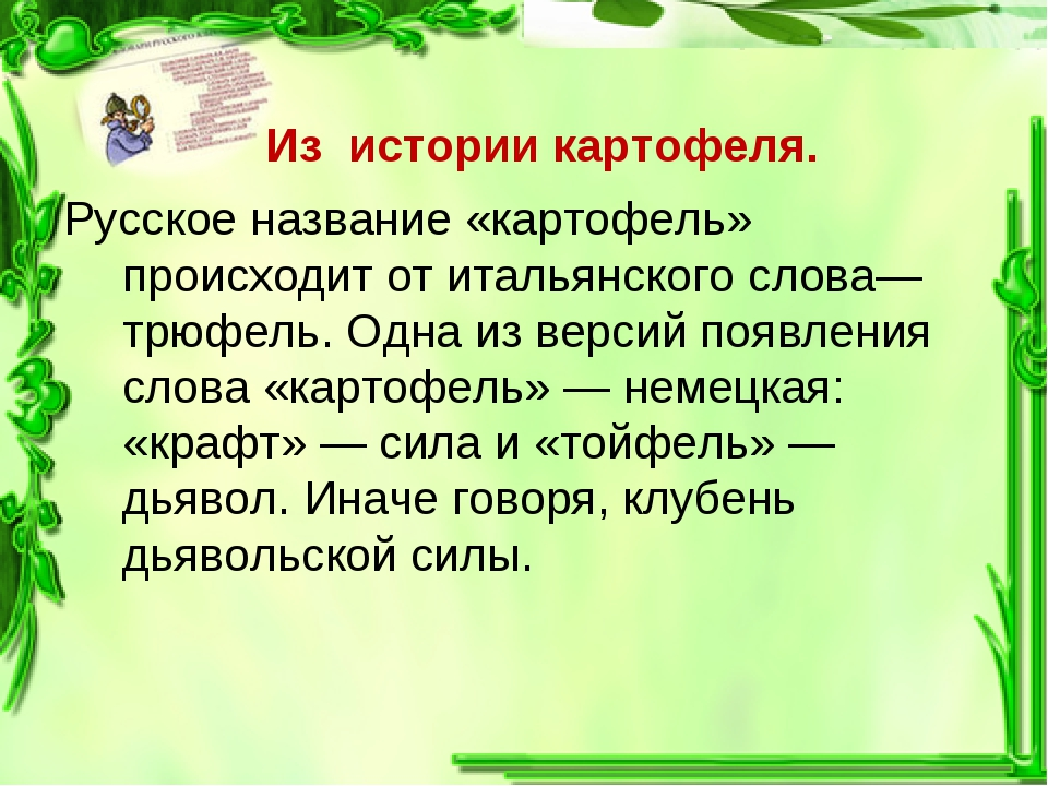 Из истории картофеля. Русское название «картофель» происходит от итальянског...
