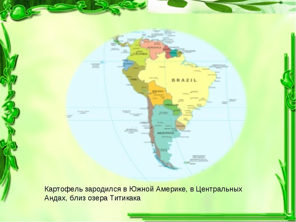 Картофель зародился в Южной Америке, в Центральных Андах, близ озера Титикака