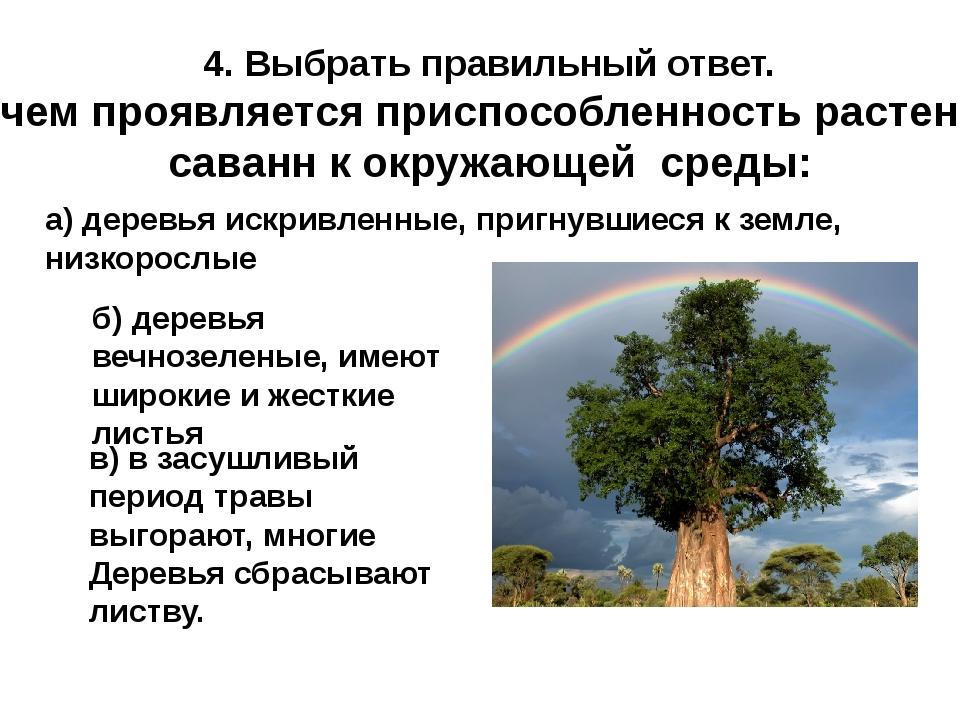 4. Выбрать правильный ответ. В чем проявляется приспособленность растений сав...