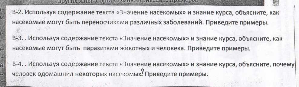 hello_html_673cb9ec.jpg