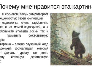 Почему мне нравится эта картина Утро в сосновом лесу» умиротворяет уравновеше