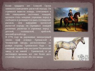 Более тридцати лет Алексей Орлов занимался выведением рысистой породы. Он стр