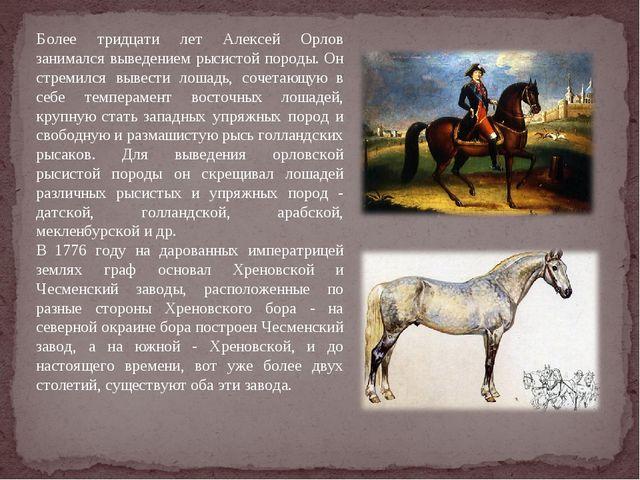 Более тридцати лет Алексей Орлов занимался выведением рысистой породы. Он стр...