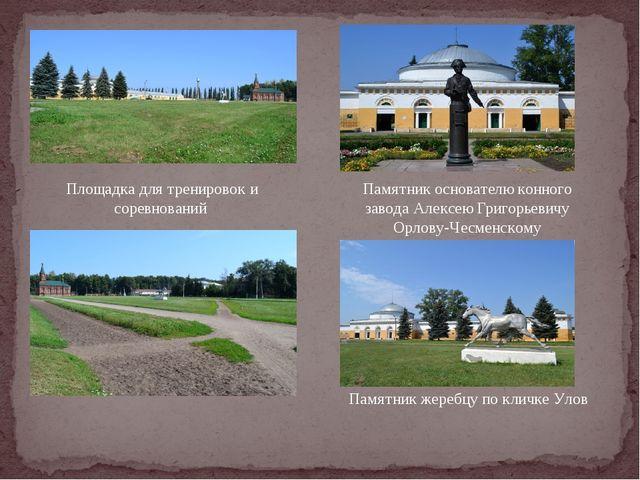 Площадка для тренировок и соревнований Памятник основателю конного завода Ал...