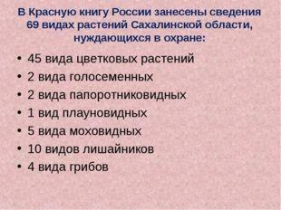 В Красную книгу России занесены сведения 69 видах растений Сахалинской област